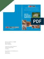 Guia Riesgos Ambientales Peru
