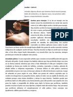 Diccionario de Términos Sexuales- Letra A
