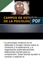 Campos de Estudio de La Psicología
