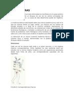 !4 Kinesiologica - Protocolo - Los Chakras
