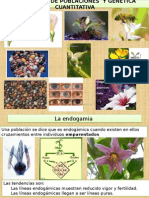 """Exogamia, Endogamia y Polinizaciã""""n"""
