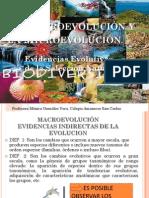 La Macroevolucion y La Microevolucion