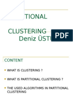 partitional-denizustun