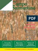 Campo Salmantino Junio 2015.pdf