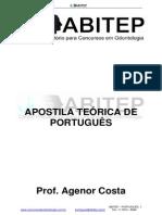 Apostila Portugues Teoria