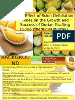 Influence of Scion Defoliation Time