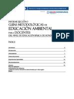 Informe Ejecutivo Sobre Las Guías Metodológicas de Educación Ambiental