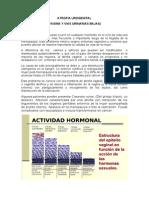 Atrofia urogenital
