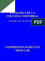 patologias de la columna vertebral