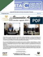 Gaceta 33 PDF