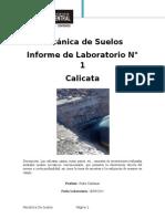 Informe de Calicata 2
