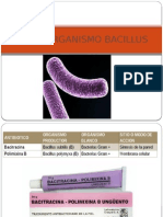 MICROORGANISMO BACILLUS.pptx