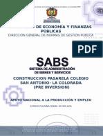 PRE INVERSION PASARELA.doc