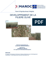 DEVELOPPEMENT DE LA FILIERE OLIVE.pdf