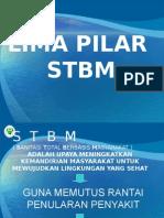 5 Pilar Stbm