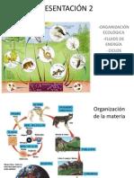 Presentacion Organizacion Ecologica y Flujos de Energia