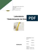 Laboratorio Determinación de Las Entalpías