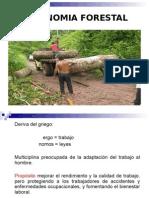 Ergonomia Forestal