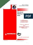 NORMAS inspección SOLDADURA AWS.pdf