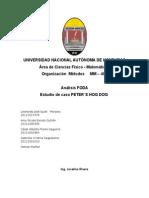 Organizacion FODA
