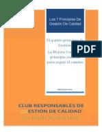 Quinto Principio de Gestión MEJORA CONTINUA PDF