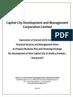 01-EOI Business Plan Fin Strategy CCDMC