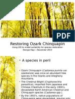 chinquapin presentation