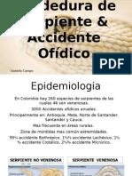 Mordedura de Serpiente & Accidente Ofídico en Colombia