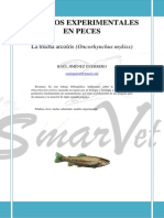Modelos experimentales en peces, La trucha arcoíris (Oncorhynchus mykiss)
