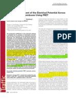 (2011) in Situ Measurement of the Electrical Potential Across the Lysosomal Membrane Using FRET