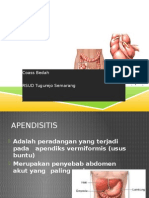 152550210-APENDISITIS-PPT-pptx.pptx
