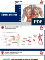 Anatomia y Sistema Digestivo