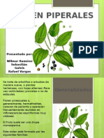 piperales
