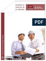 Experto Universitario Prevencion Riesgos Laborales Prl