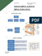 Catkul (Gadar) Benda Asing Pada Mata Dr. Ali Faisal Sp.M