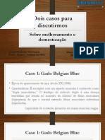 Dois casos para discutirmos.pdf