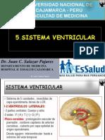 5-SistemaVentricular-2013