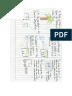 triptico proceso de enlatado alto desempeño.pdf