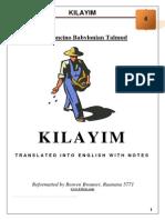 04 - Kilayim
