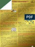 Cartel Riesgos de La Presencia de Maíz Transgénico
