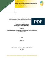 Unidad 2. Determinacion de La Muestra e Instrumentos ...
