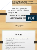 Plano de Recuperação do Arroio Dilúvio – Porto Alegre, RS