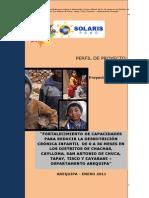 PIP Proyecto Desnutricion Cronica Infantil