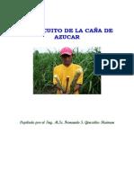 2 Guía Tca Del Cultivo
