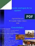 Etología de Los Equinos