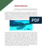 Informe Medio Ambiente C.R