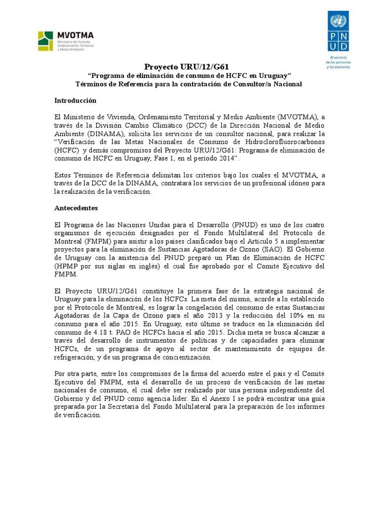 TDR Consultor Verificacion Consumo HCFC-2   Verification And ...