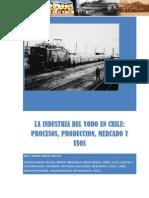 La Industria Del YODO en Chile