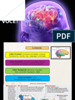 Cerebro e Voce