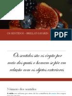 OS SENTIDOS.pdf